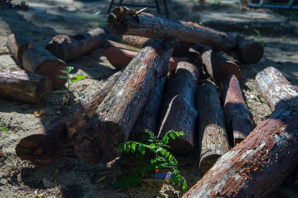 Vadkerti-tó kilátó felújítás 2020